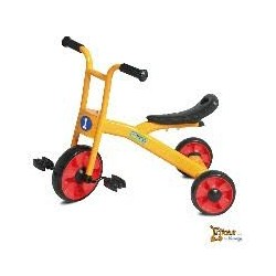 Triciclo Endurance Trike